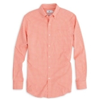 rockey top orange-3962
