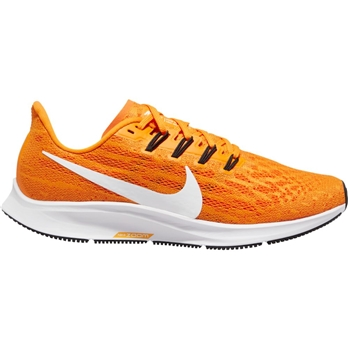 Nike Air Zoom Pegasus 36 TB